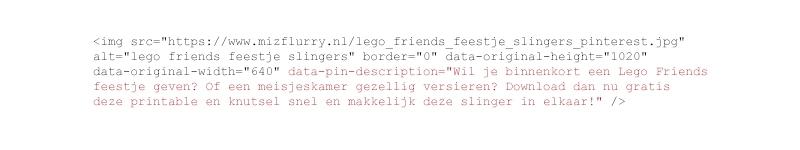 data pin description pinterest voorbeeld